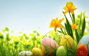 colorful-easter-eggs-holiday-hd-wallpaper-1920x1200-10811